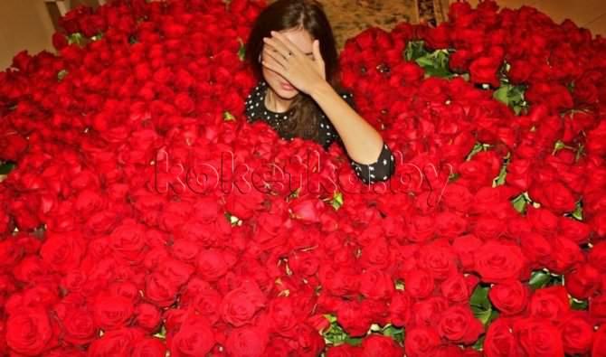 Цветы розы картинки на аву