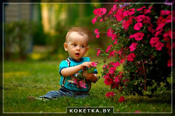Ребенок обдирает листы с колючего куста чтобы съесть их
