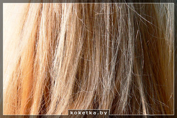 Секущиеся волосы с сухими концами