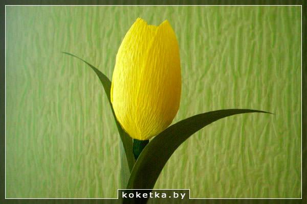 Тюльпан из креповой бумаги