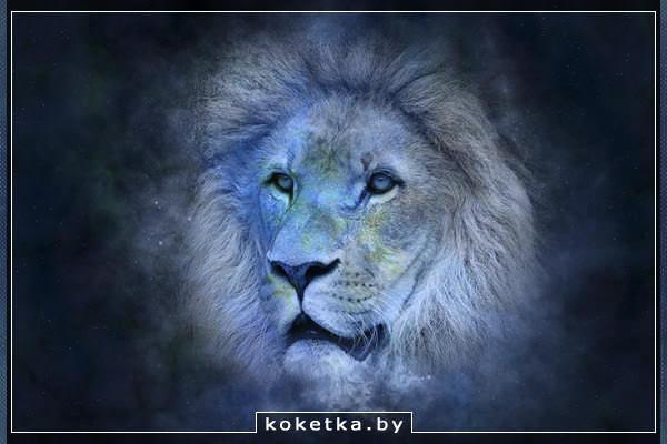 Львы со стрельцами в сексе