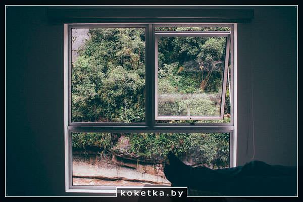 вылез в окно сонник