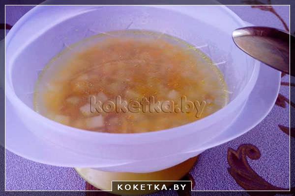 Рецепт приготовления супа с уткой для детей с фото